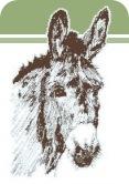 neddi-logo-small